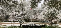 Houston snow 2017